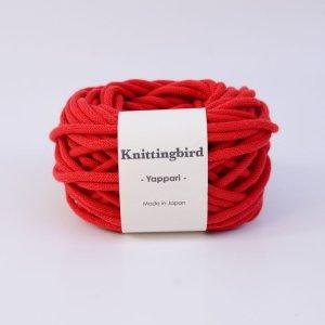 画像2: コットン極太糸 /   やっぱり  50・100g